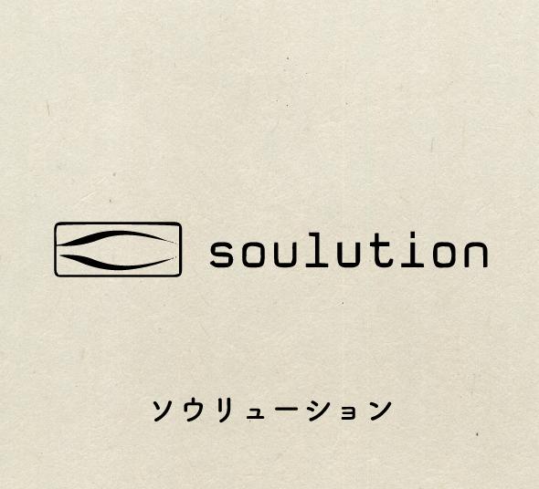 soulutionsoulution